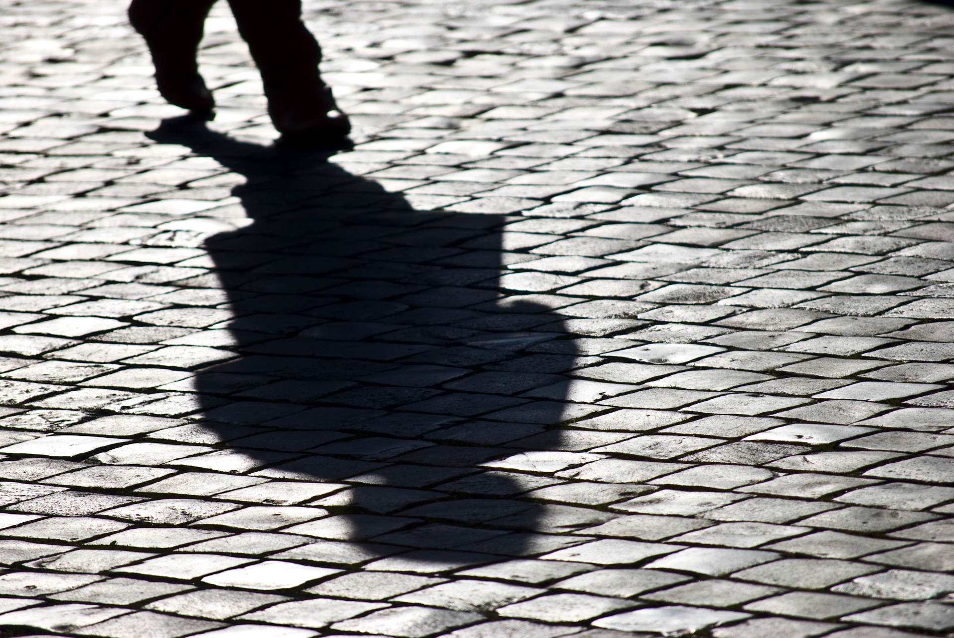 Why Half of Your Software Could be Shadow IT (And How to Take Back Control)