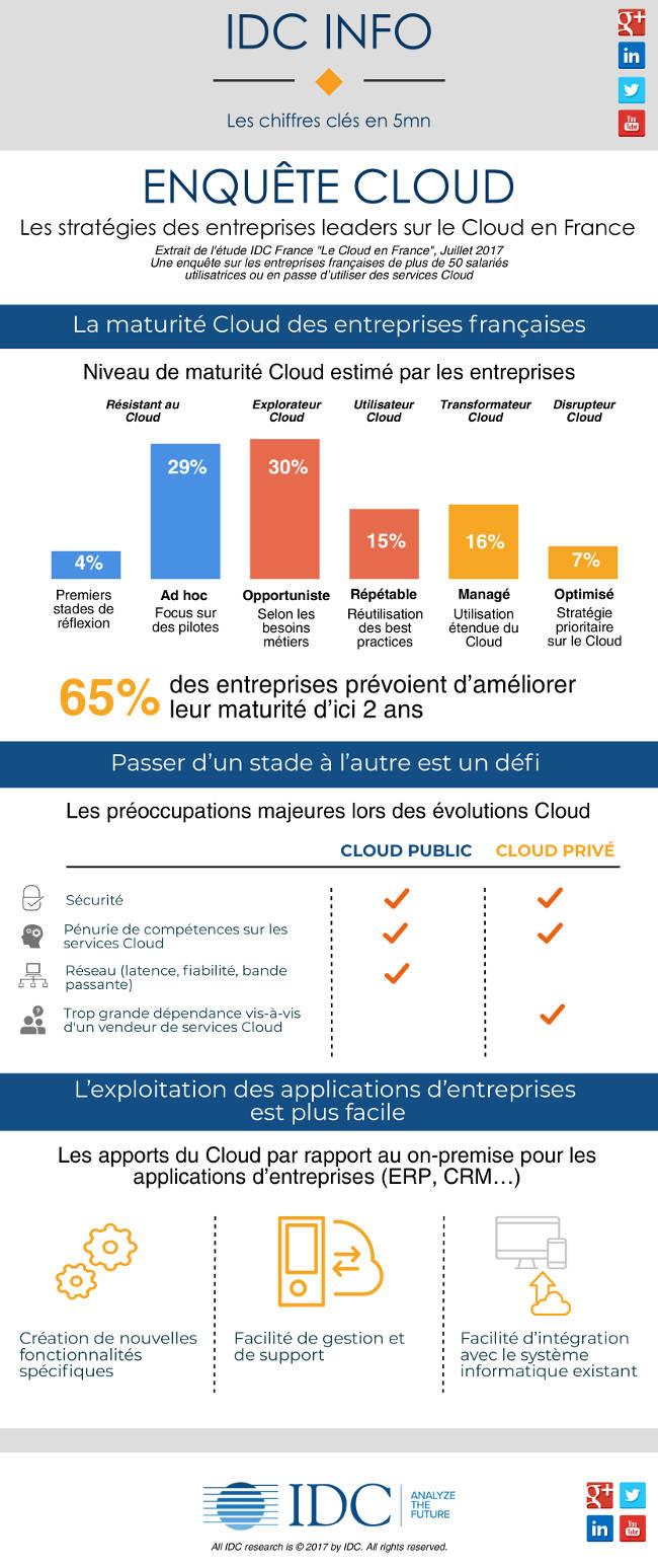 Les stratégies des entreprises leaders sur le Cloud en France