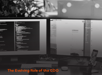 docauthority The Evolving Role of the CDO