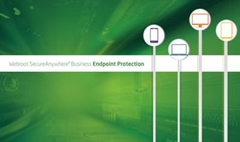 Webroot Webroot SecureAnywhere Business Endpoint Protection