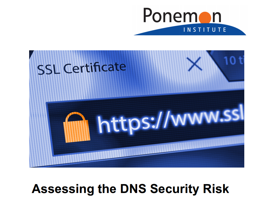 Assessing the DNS Security Risk
