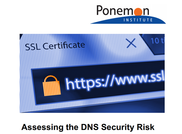 Infoblox Assessing the DNS Security Risk