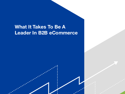 Magento What It Takes To Be A Leader In B2B eCommerce