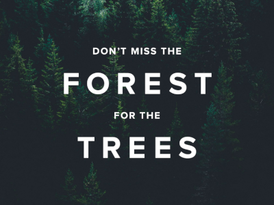 Allocadia ROI V Attribution: Don't Miss the Forest for the Trees