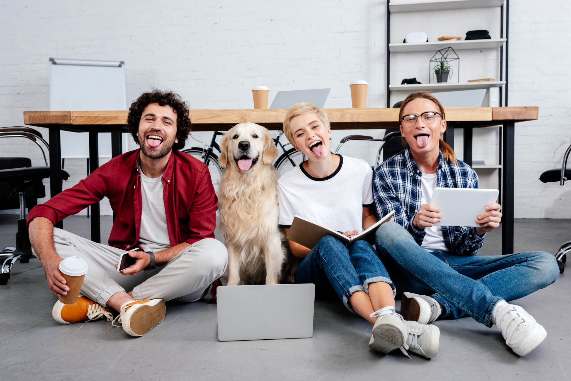 11 Questions You Need to Ask to Create a Pet-Friendly Workplace